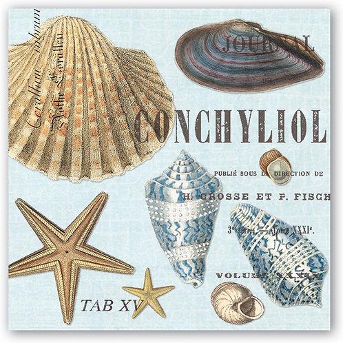 Seashells Cocktail Napkins