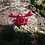 Thumbnail: Large Crochet Crab Rattle