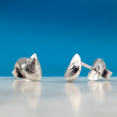 Silver Mussel Stud Earrings