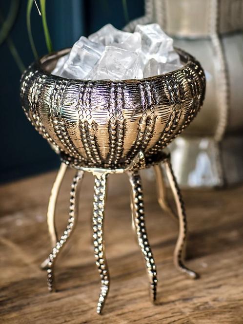 Jellyfish Bowl