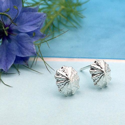 Silver Limpet Stud Earrings