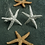 Thumbnail: Pewter Starfish Cufflinks
