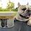 Thumbnail: Maxxicardio for dogs 150g Powder