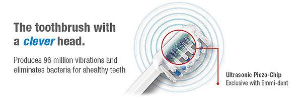 EMMi-PET Toothbrush Principle
