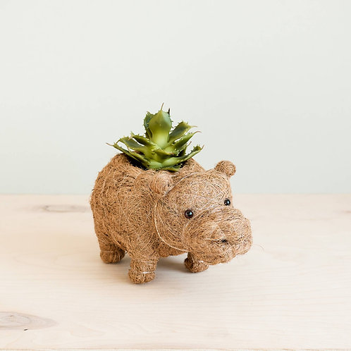 Animal Planter (Baby)