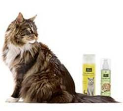 Hygienia tuotteet kissoille
