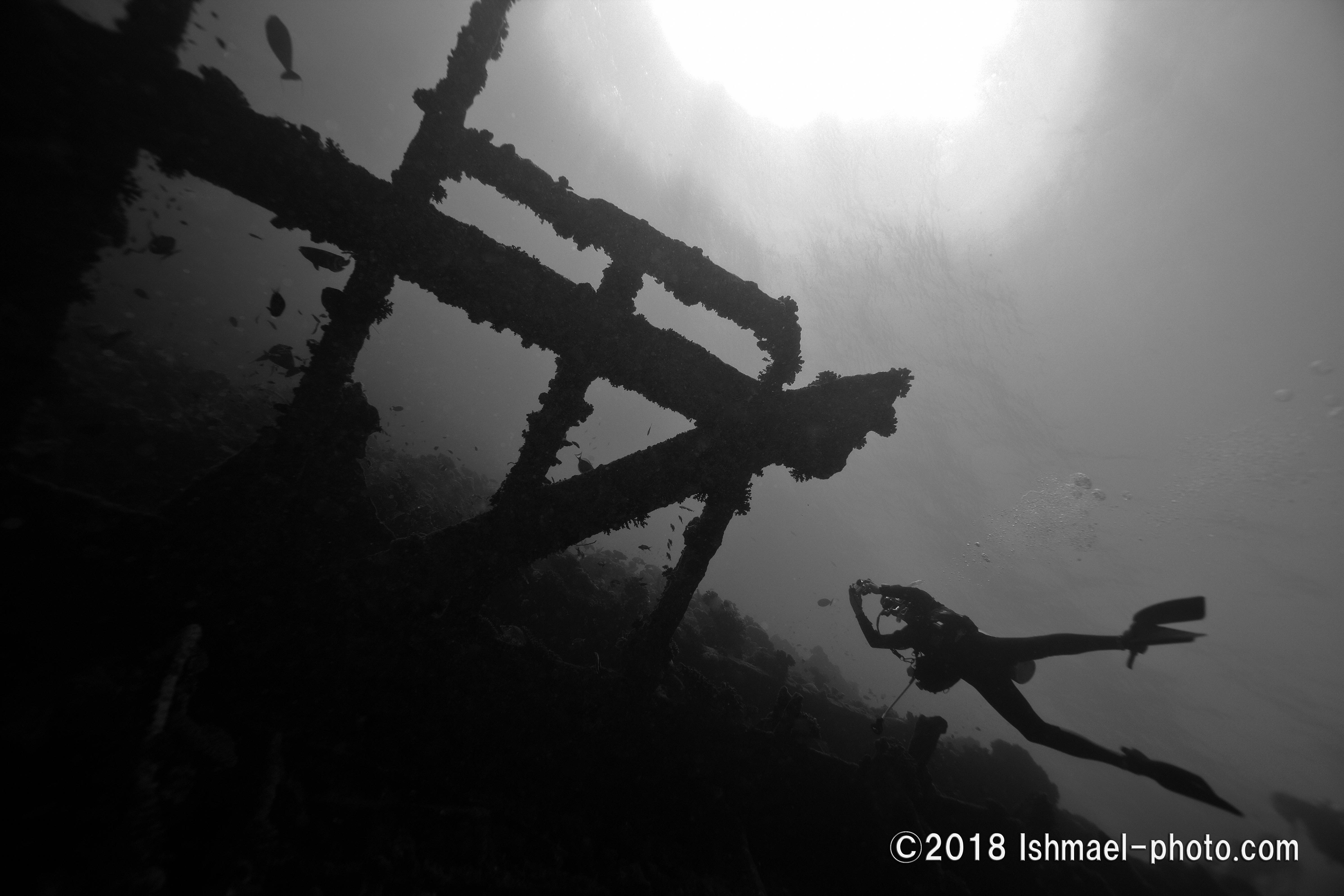 Wreck 沈船
