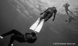 Divers ダイバー