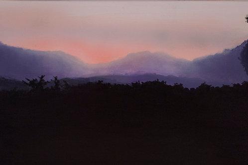 Misty Field  (12x30)