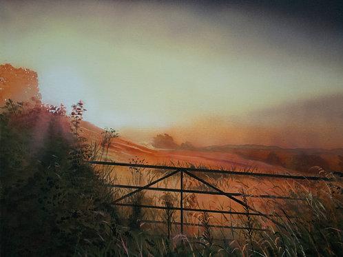 Forgotten Field  (14x18)