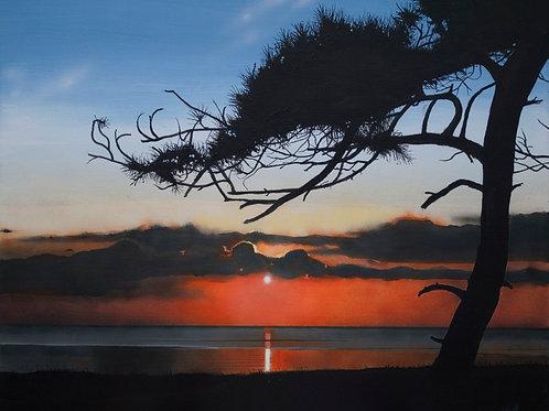 Patrick's Point Sunset  (16x20)