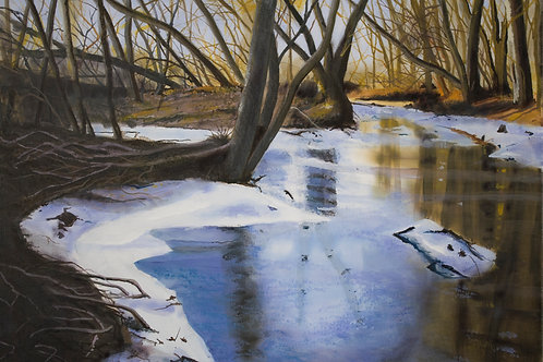 Marsh Ice  (14x20)