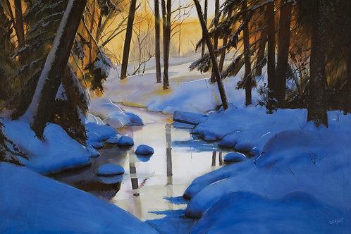 North Carolina Winter  (16x24)