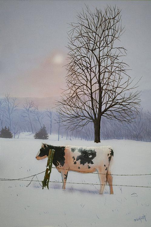 Indiana Winter   (20x14)