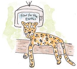 201809-Leopard.jpg