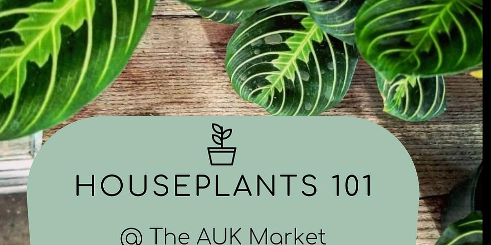 Workshop! Houseplants 101  🌱