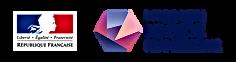 Logo Mission société numérique