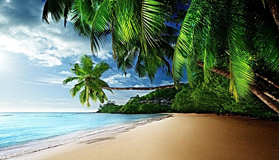 tropical-paradise-coast.jpg
