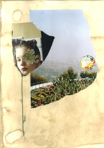 Scan_Collage-4.jpg