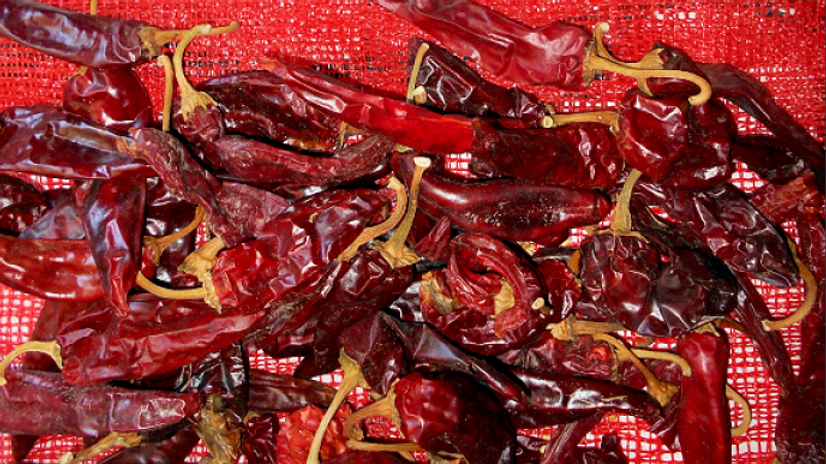 Hatch XHot Chile pods