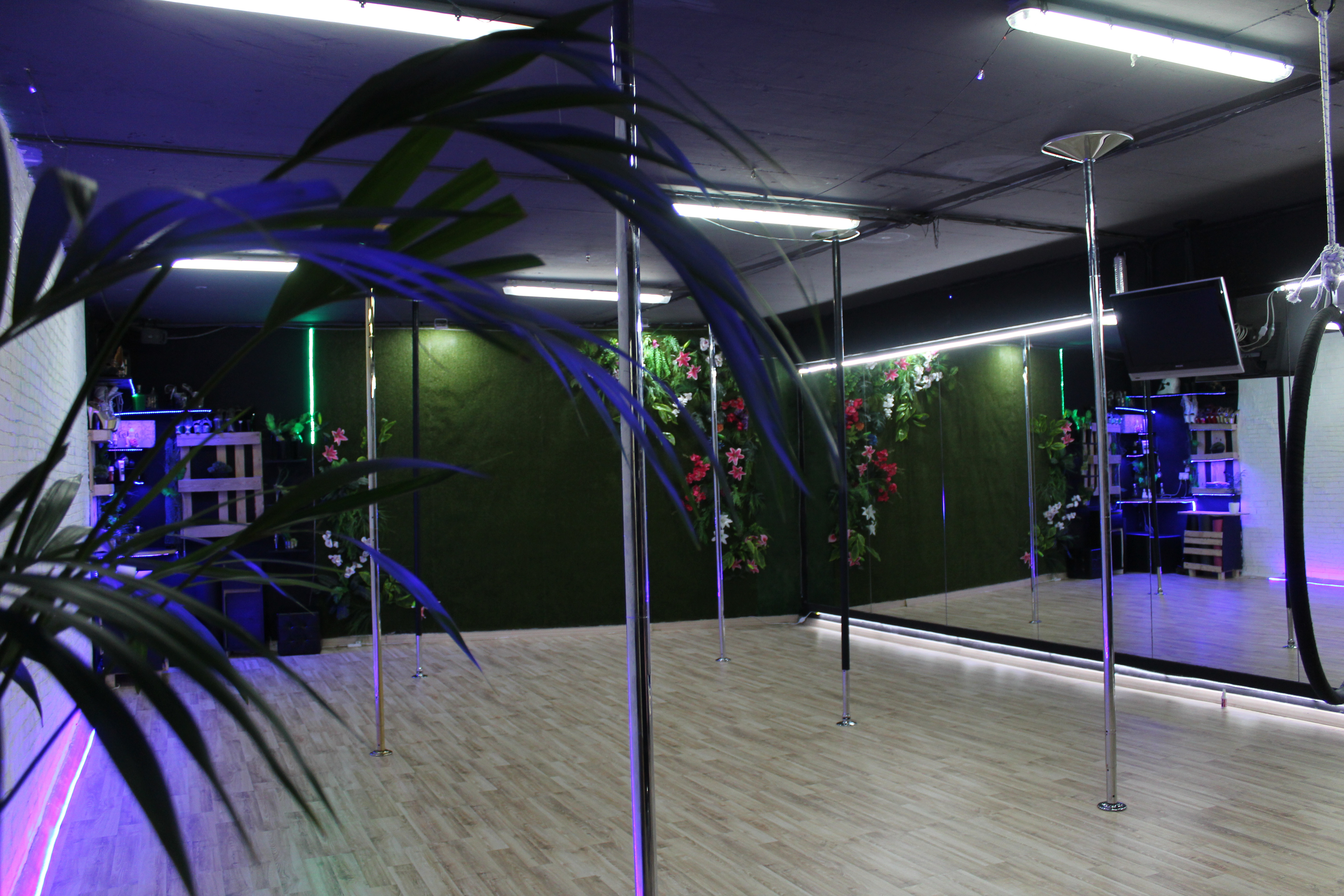 Studio Rent