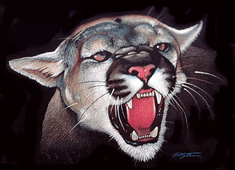 Angry_Cougar_edited.jpg