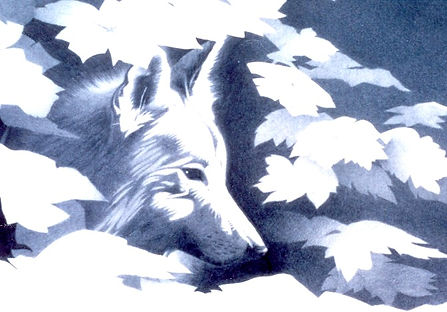 White wolf_edited.jpg