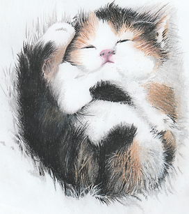 cute kitten_20180831_0001.png