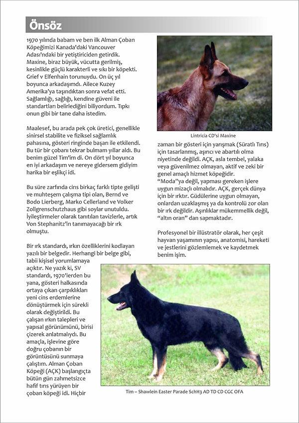 Çizimlerle Alman Çoban Köpeği01.jpg
