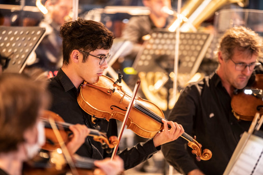 Etienne Lin 2, Viola