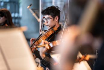 Etienne Lin, Viola
