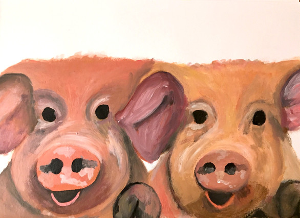 Will & Rory's Pigs