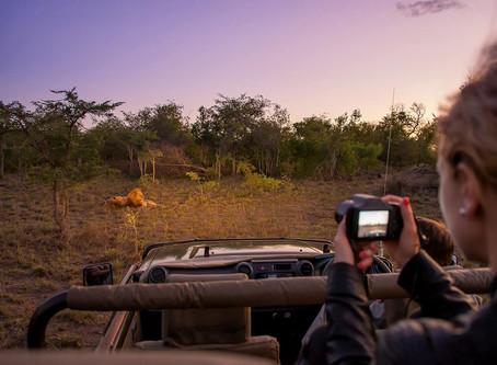 Foto Safari.