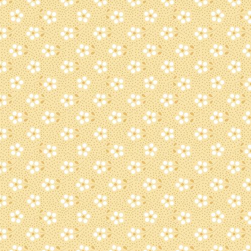 Mini primavera amarelinho