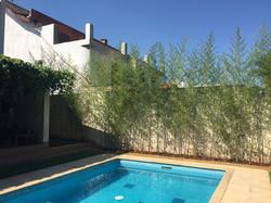 Bambu piscina