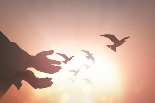 Memorial Service Birds