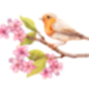 vogel2.jpg