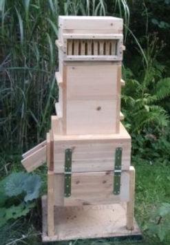 Bienenkugel-Ovoid%20mit%20Honigraum_edit