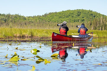 2 - Algonquin Backcountry Adventure Phot