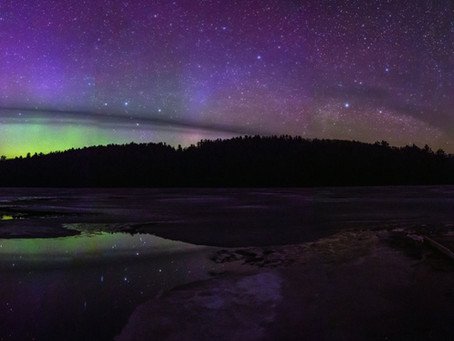 Algonquin and Moose and Aurora, oh my!