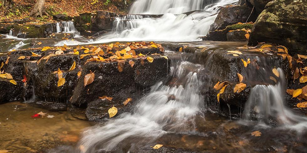 Waterfalls of Muskoka Workshop