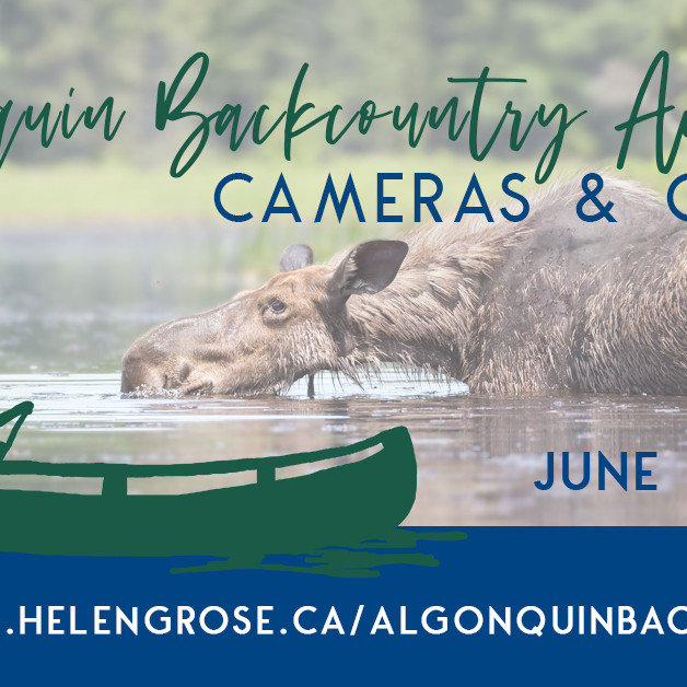 Algonquin Backcountry Adventure: Cameras and Canoes (June 26, 2021)