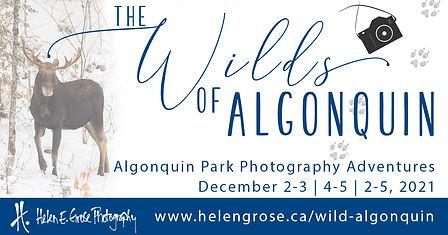 Wilds of Algonquin 2021.jpg