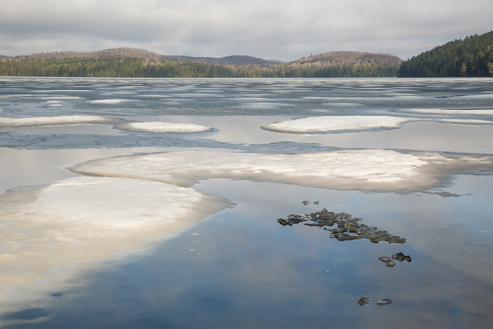 Ice melting on Lake Opeongo in Algonquin Park 2018