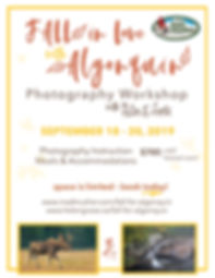 Fall Photography Workshop in Algonquin Park