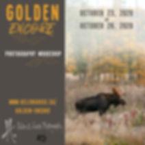 Golden Encore - ALL.jpg