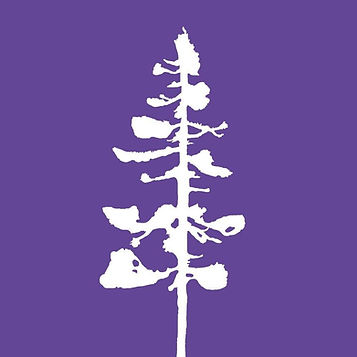 Purple Flag.jpg