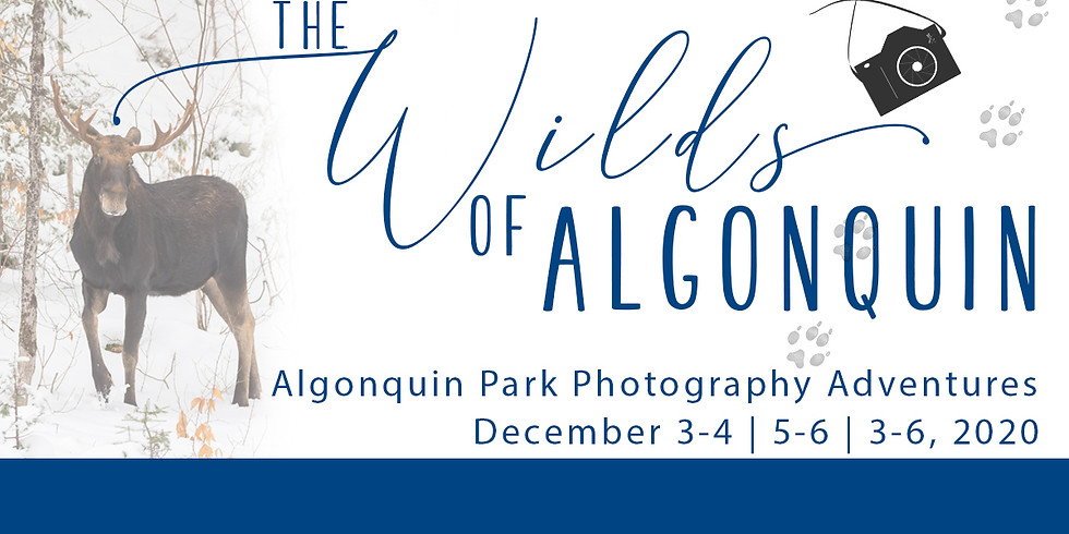 The Wilds of Algonquin
