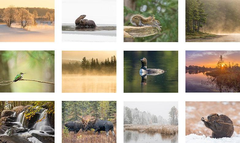 Calendar Images 2022.jpg