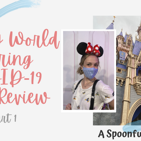 Disney World Trip Review-Fall 2020